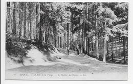 DC 585 - Epinal - Le Bois De La Vierge, - Le Sentier Des Roches. - LL 110 - Epinal