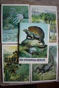 ANIMALS HISTORY  - Dinosaur Serie - 16 PCs - Old USSR Postcard 1979 - Altri