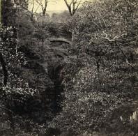Pays De Galles Devil's Bridge Pont Y Mynach Anciennne Photo Stereo Bedford? 1865