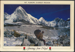 °°° 3785 - NEPAL - MT. PUMORI EVEREST REGION - 1991 With Stamps °°° - Nepal