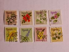 OUGANDA  1969   LOT# 1  FLOWERS - Ouganda (1962-...)