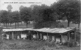 (24)  CPA  Courban Rucher De Mr Guyot  Apiculteur   (bon Etat) - Otros Municipios