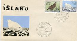 Iceland/Islande/Ijsland/Island FDC 27.I.1965 Bird Ptarmigan Matching Cover - FDC