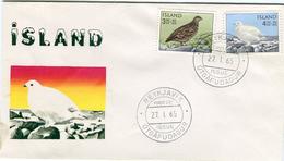 Iceland/Islande/Ijsland FDC 27.I.1965 Bird Ptarmigan Matching Cover - FDC