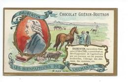 Chromo Daubenton Les Bienfaiteurs De L'Humanité Pub: Chocolat Guerin-Boutron 105 X 65 Mm  TB - Guérin-Boutron
