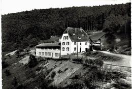 Environs De Munster - Maison De Vacances Protestante Geisberg Par Eschbach Au Val - 436a - Otros Municipios