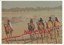 Corsa Di Cammelli, Doha, Quatar, 5.1.1998. - Other