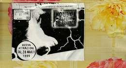 X CD ROM NEWTON VIAGGIO VIRTUALE A DISNEYLAND PARIS DISCO DI BACKUP - CDs