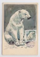 NORTH POLE 14 Drift Station Base Polar ARCTIC Mail Card USSR RUSSIA Animal Bear - Stations Scientifiques & Stations Dérivantes Arctiques