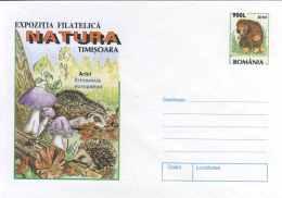 4187  Hérisson: PAP De La Roumanie, 1998  -  Hedgehog  Postal Stationery Cover. Apple Mushroom Champignon Pomme - Timbres