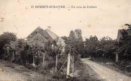 DOMECY-SUR-CURE  -  Un Coin De Culêtre - France
