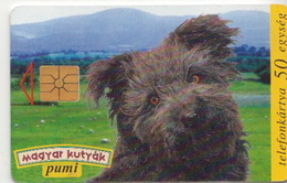 Hungary Phonecard With Dog - Honden