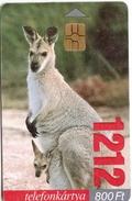 Hungary Phonecard With Kangoroo - Other