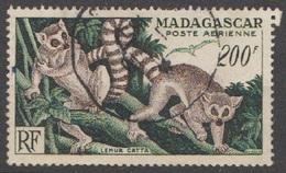 Madagascar Aérien 1954 N° 17  Lémuriens   (E3) - Airmail