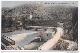 LIBAN - Le Fleuve Du CHILA - Líbano