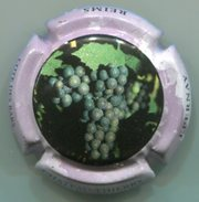 CAPSULE-CHAMPAGNE CO.GE.VI. N°15 - Champagnerdeckel