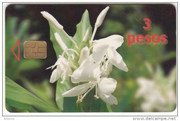 CUBA - White Flower, Etecsa/Ascom Test Card 3 Pesos, Used - Cuba