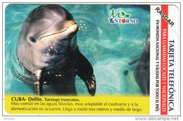 CUBA(Urmet) - Dolphin, Tirage 75000, 01/03, Mint