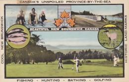Canada New Brunswick Fishing Hunting Bathing & Golf Multi View