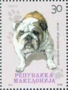 MK 2008-457 DOG, MAKEDONIA, 1 X 1v, MNH - Macédoine