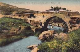 CPA Taza Pont Portugais Sur L'Oued Taza (pk34467) - Maroc