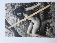 """PIN-UP  NUE  SUR UN TRONC  D' ARBRE POSITION ÉROTIQUE """"photo Carte Format CP  10 X 14,5 Cm """"noir Et Blanc Brillant """" - Pin-Ups"""