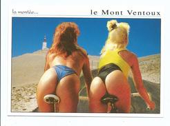 Cyclisme Grivois Humour : La Montée Du Mont Ventoux - Pin Up Fessiers String - Ed Ajax Monaco écrite - Radsport