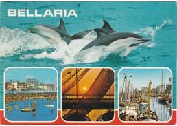 Cartolina - Postcard  - BELLARIA  - RIMINI - Rimini
