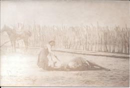FOTO ORIGINAL DE LA CONQUISTA DEL DESIERTO L'ARGENTINE PERIODO 1878-1885 - CERCANIAS DE BOLIVAR LABORES CON EL GANADO - Luoghi