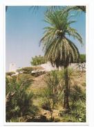 V980 Djibouti - Fort De Dickhil / Non Viaggiata - Gibuti