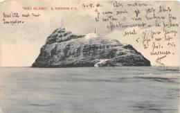 CAP VERT / Bird Island - Cap Vert