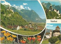 V983 Liechtenstein - Vaduz - Hauptstadt Des Landes Und Residenz Des Fursten / Viaggiata - Liechtenstein