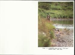MEILLEURS VOEUX POUR LA NOUVELLE ANNEE  . L'OURS DES PYRENEES . 14 SEPTEMBRE 1991 . SAINT LARY SOULAN . - Documents De La Poste