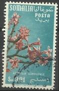 Somalia  - 1955 Flora Series 1c Used   Sc 198 - Somalia