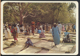 °°° 4006 - CAMERUN - MARCHE DU NORD °°° - Camerun