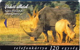 Hungary Phonecard With Protected Rhino - Jungle