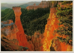 CPM Radiant Colors Refect Of The Cliff Walls Of Agua Canyon - Bryce Canyon