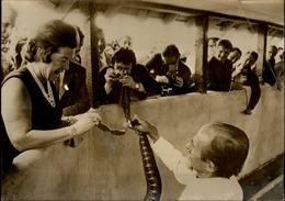 PHOTO - Photo De Presse - Duchesse De BEDFORD  - Woburn - Serpent - Célébrités