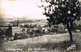 24049. Postal  SAVIGNY (Rhone) Distrito LYON. Vue Generale - Lyon