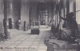 Tervuren, Tervueren, Nouveau Musée De Congo, Galerie Des Bois (pk34527) - Tervuren