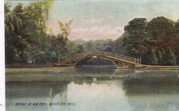 Massachusetts Worcester Bridge In Elm Park Rotograph