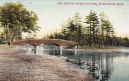 Massachusetts Worcester The Bridge Institute Park