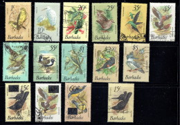 BARBADOS 1979-82 Birds Postaly Used. Incomplete But Includes All High Values - Barbados (1966-...)