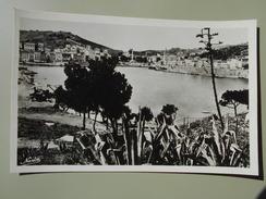 PYRENEES ORIENTALES PORT VENDRES VUE GENERALE DU PORT - Port Vendres