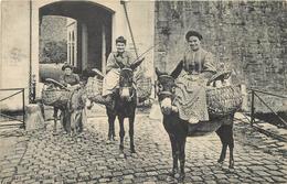 BASQUAISE ALLANT AU MARCHE Avec Des ânes (carte Vendue En L'état). - Anes