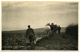 SOCIAL HISTORY : HORSES PLOUGHING FIELD : SONS OF THE SOIL - Cultivation