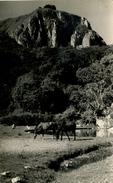 SOUTHERN RHODESIA - VUMBA - LEOPARD ROCK RP - Zimbabwe