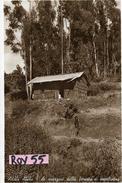 Etiopia Colonia Italiana Addis Abeba Ai Margini Della Foresta Di Eucaliptus Veduta Casa Capanno Anni 30(vedere Retro) - Etiopia