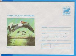 BIRD BIRDS PELICANS ROMANIA POSTAL STATIONERY