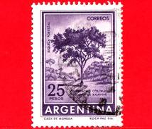 ARGENTINA - Usato - 1966 - Ricchezza Forestale - Schinopsis Balansae - Quebracho Colorado - 25 - Argentina